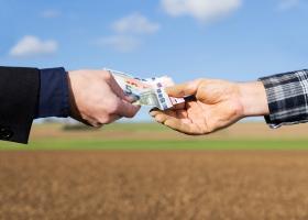CEC Bank: În ultimele luni, s-a lucrat mult pe amânarea ratelor fermierilor...