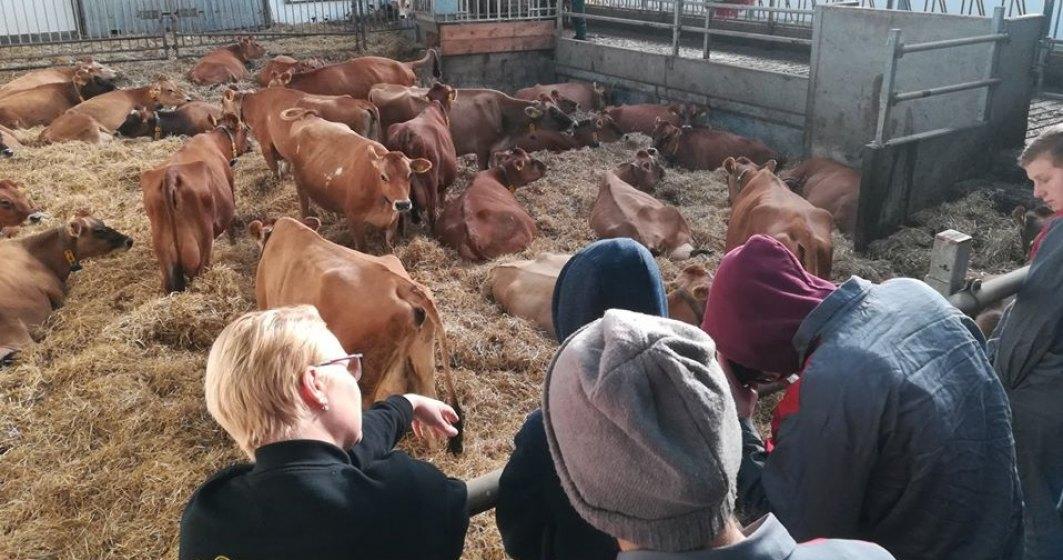Peste 100 de elevi şi profesori din licee agricole româneşti fac schimb de experienţă în Danemarca