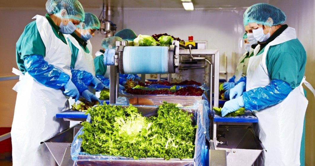 Producătorul român de salate Eisberg își continuă producția la întreaga capacitate și speră să nu aibă discontinuități în lanțul de aprovizionare cu materii prime