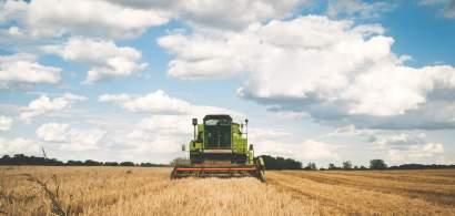 Agricultori: Închiderea piețelor ne va aduce produse mai nesănătoase