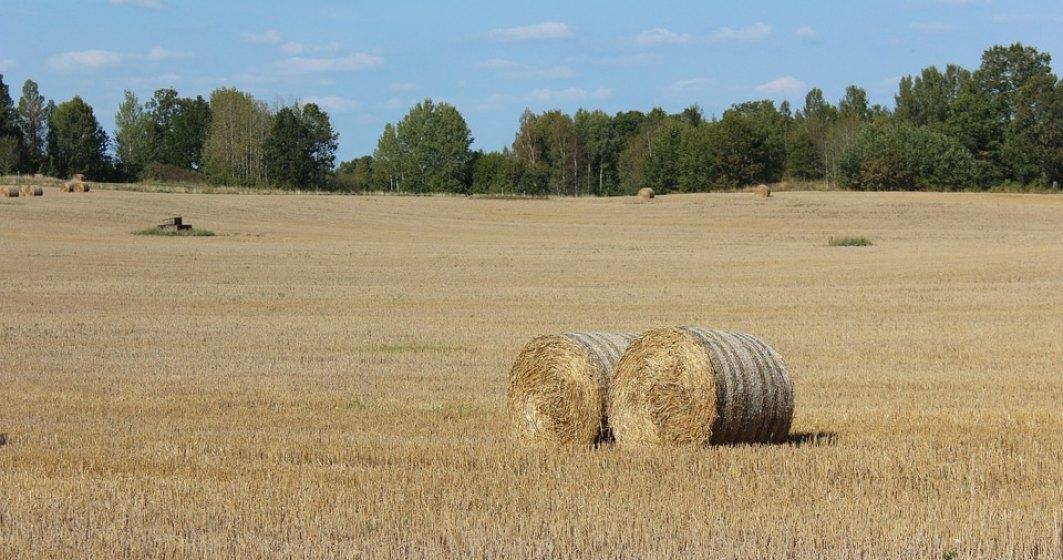 Subventiile platite cu intarziere de catre Guvern au generat un val de insolvente in agricultura in 2016