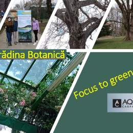 """,,Focus to Green Eco Life""""..."""