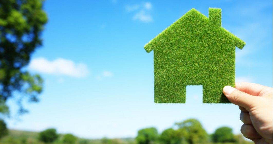 O nouă tendință va lua amploare pe piața construcțiilor - utilizarea materialelor verzi