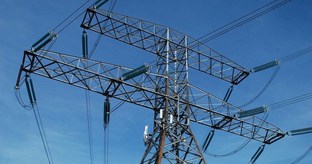 Dedeman a ajuns sa detina actiuni Electrica de 256 mil. lei