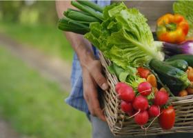 Ce legume caută românii pe internet după închiderea piețelor