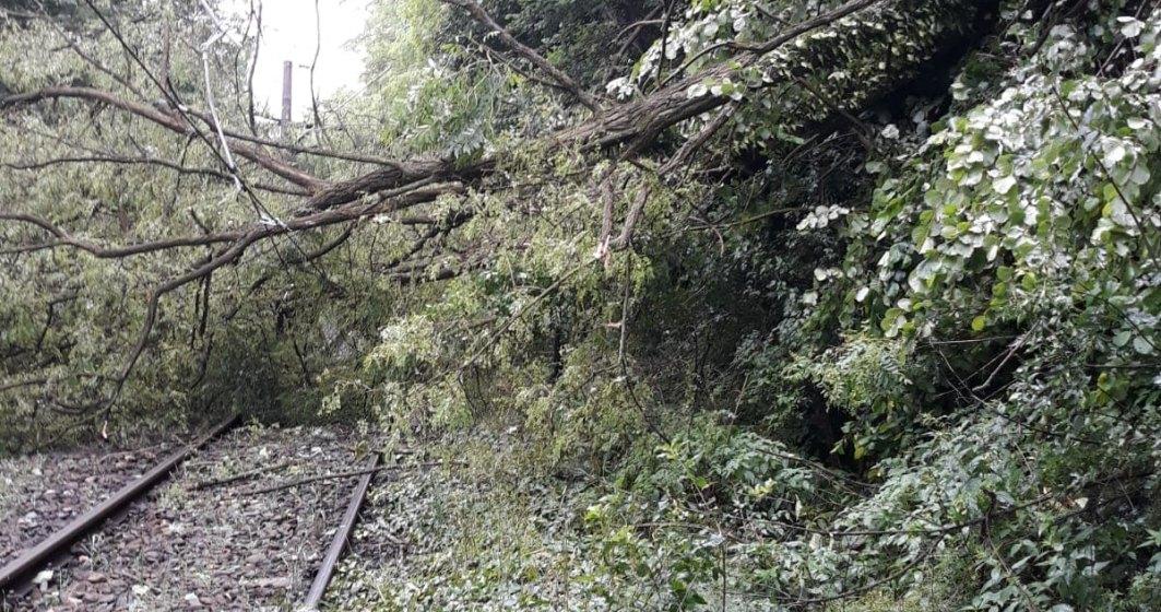 Circulatie feroviara este oprita in vestul tarii, mai multe trenuri sunt blocate pe ruta Bucuresti-Timisoara si au intarzieri de pana la 7 ore