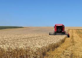 FOTO  A renunțat la o posibilă carieră în turism pentru o afacere cu grâu în...