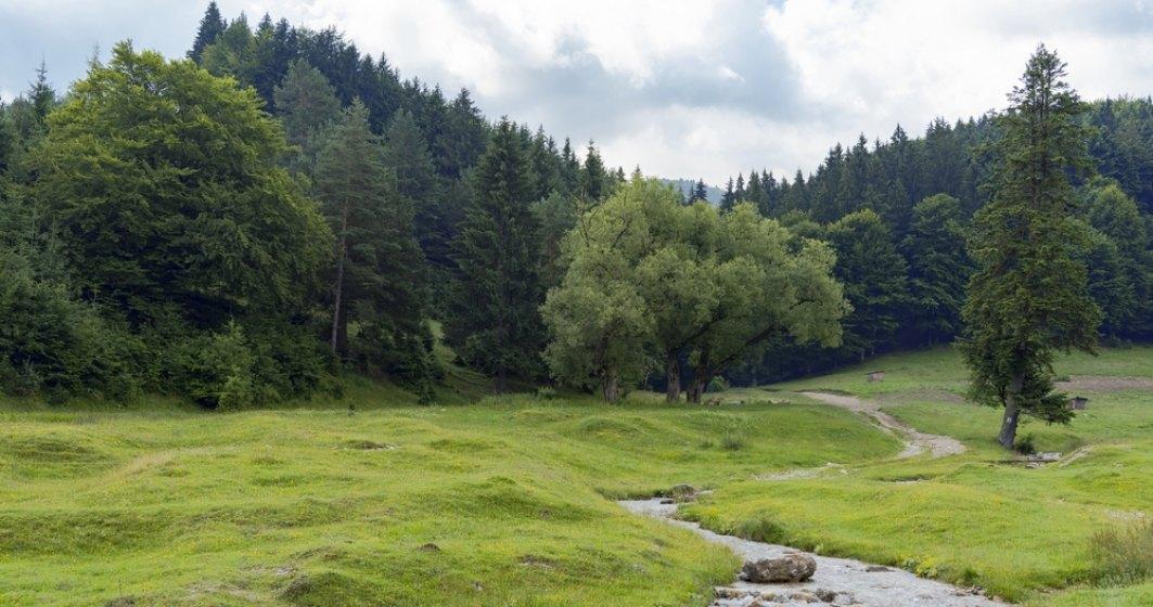 Destinatii turistice din Romania pe care le poti vizita vara aceasta