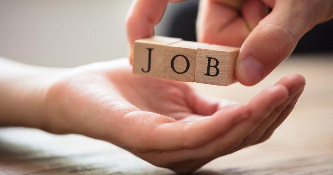 Ucenicia la locul de munca si stagiul profesional, masuri de stimulare a ocuparii fortei de munca