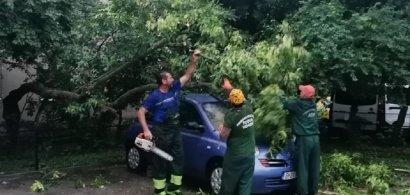 Primăria Sectorului 4 despăgubește mașinile avariate de furtuna de vineri