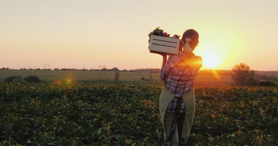 Secretar de stat MADR, despre fermierii care au fost nevoiți să arunce producția: Statul nu poate veni să dea doar ajutoare sociale, iar fermierii să nu facă nimic