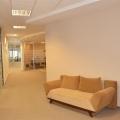 Afaceri cu ciment in ritm de dans: Cum arata biroul Holcim - Foto 10