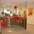 Afaceri cu ciment in ritm de dans: Cum arata biroul Holcim - Foto 11