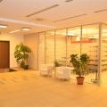 Afaceri cu ciment in ritm de dans: Cum arata biroul Holcim - Foto 16