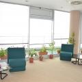 Afaceri cu ciment in ritm de dans: Cum arata biroul Holcim - Foto 22