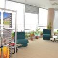 Afaceri cu ciment in ritm de dans: Cum arata biroul Holcim - Foto 23