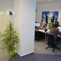 Noul sediu Flanco: Fotografii ale angajatilor, pe sigla gigant a companiei - Foto 15
