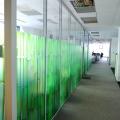 """Cum si-au ales biroul consultantii de la AECOM: """"Metroul, la cel mult 500 de metri"""" - Foto 34"""