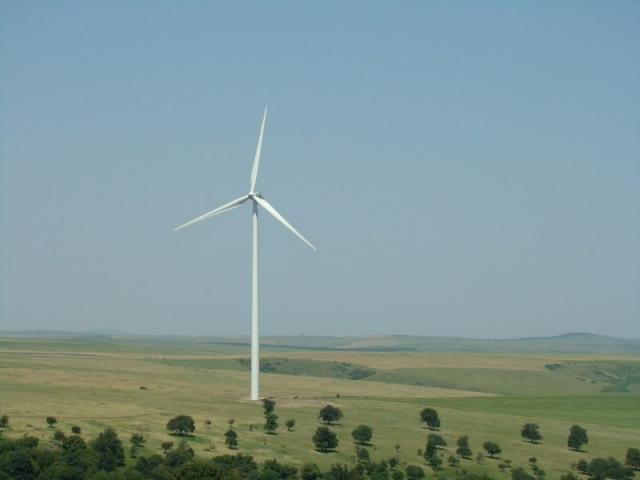 Reportaj din patria eolienelor: Cum functioneaza morile care transforma vantul in energie verde - Foto 1 din 6