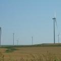 Reportaj din patria eolienelor: Cum functioneaza morile care transforma vantul in energie verde - Foto 2