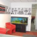 Doi ani de BIROU DE COMPANIE: cum arata sediile celor mai puternice firme - Foto 11