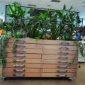 In vizita la sediul Unilever: locul unde spatiul traditional de lucru dispare - Foto 34