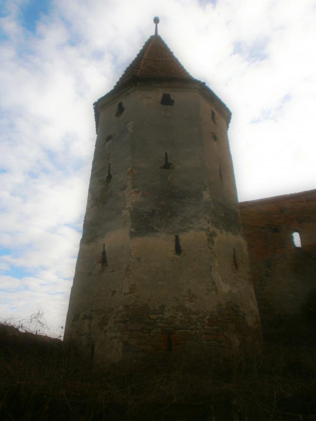 Turnul si Bastionul Macelarilor din Sighisoara, restaurate de Printul Charles si Liviu Tudor - Foto 1 din 10