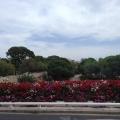 REPORTAJ: Valencia, orasul traversat de cel mai lung parc din lume - Foto 32