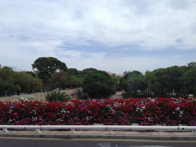 REPORTAJ: Valencia, orasul traversat de cel mai lung parc din lume - Foto 32 din 50