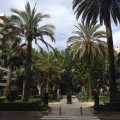 REPORTAJ: Valencia, orasul traversat de cel mai lung parc din lume - Foto 44