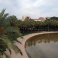 REPORTAJ: Valencia, orasul traversat de cel mai lung parc din lume - Foto 49