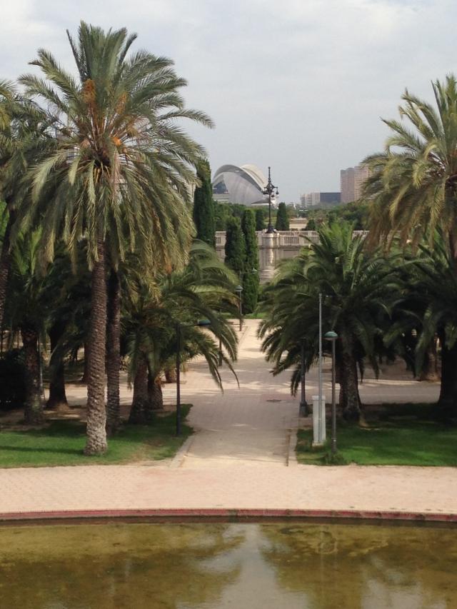 REPORTAJ: Valencia, orasul traversat de cel mai lung parc din lume - Foto 50 din 50