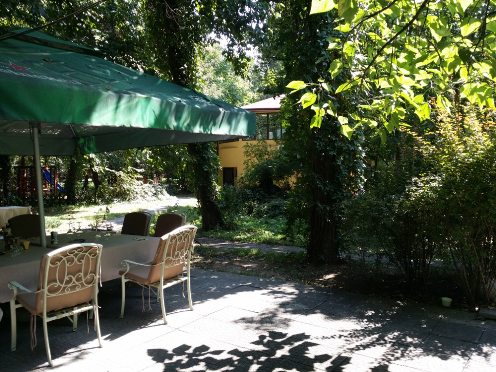 Review George Butunoiu: Cel mai ieftin restaurant din Herastrau - Foto 10 din 13
