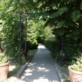 Review George Butunoiu: Cel mai ieftin restaurant din Herastrau - Foto 13