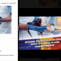 Cum minte PSD in reclamele sponsorizate de pe Facebook - Foto 3