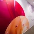 Cum arata sediul gigantului Procter&Gamble - Foto 17
