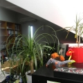 Un dezvoltator imobiliar, in propria casa - Foto 16