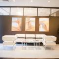 Cum arata sediul avocatilor lui Nestor - Foto 3