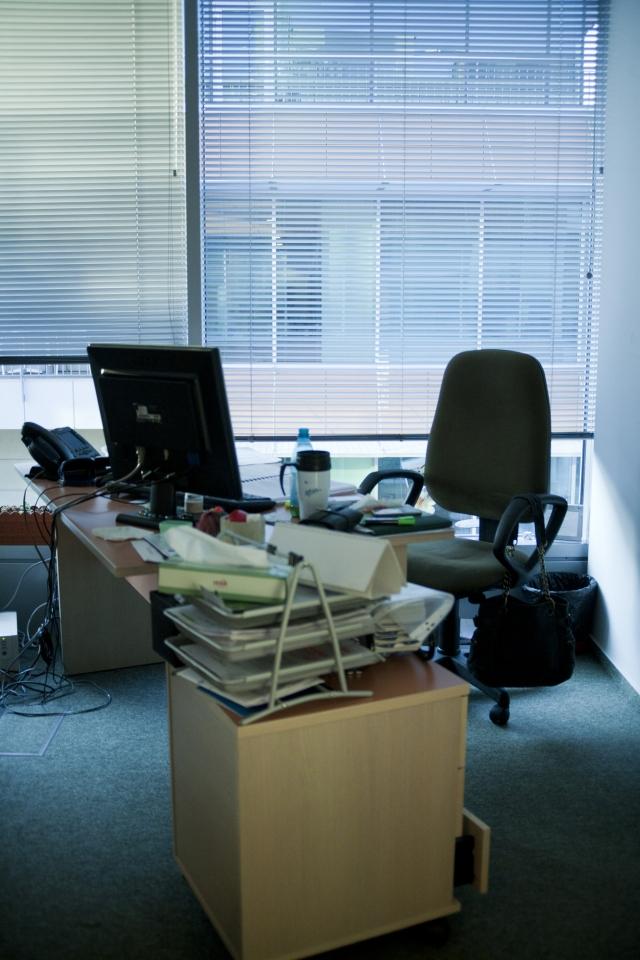 Cum arata sediul avocatilor lui Nestor - Foto 24 din 32