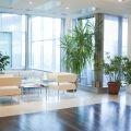 Cum arata sediul avocatilor lui Nestor - Foto 4