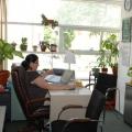 Lafarge, un sediu business intr-o zona plina de politic - Foto 20
