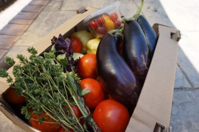 Ferma de legume bio