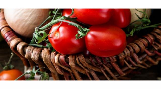 """Plantatia de legume bio care promite rosii cu gustul de """"altadata"""""""