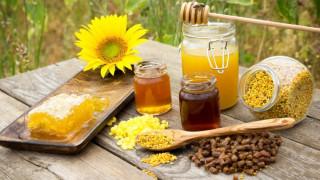 Afacere cu produse apicole: cum sa iti lansezi un business profitabil in aceasta industrie