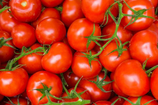 Afacere cu rosii pe suprafata extinsa: cum sa cultivi o cifra de afaceri de 1 milion de euro