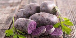 Plantatie de cartofi mov pe un hectar